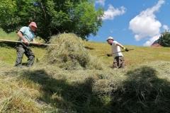 Gruppeneinsatz Suedtiroler Landwirt 2020
