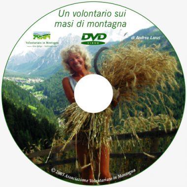 dvd-it